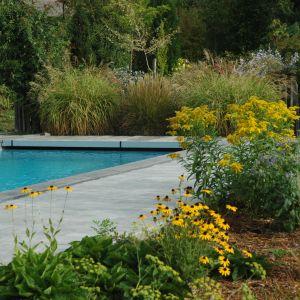 Vignette Aménagement piscine