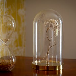 Vignette décoration et souvenirs sous verre